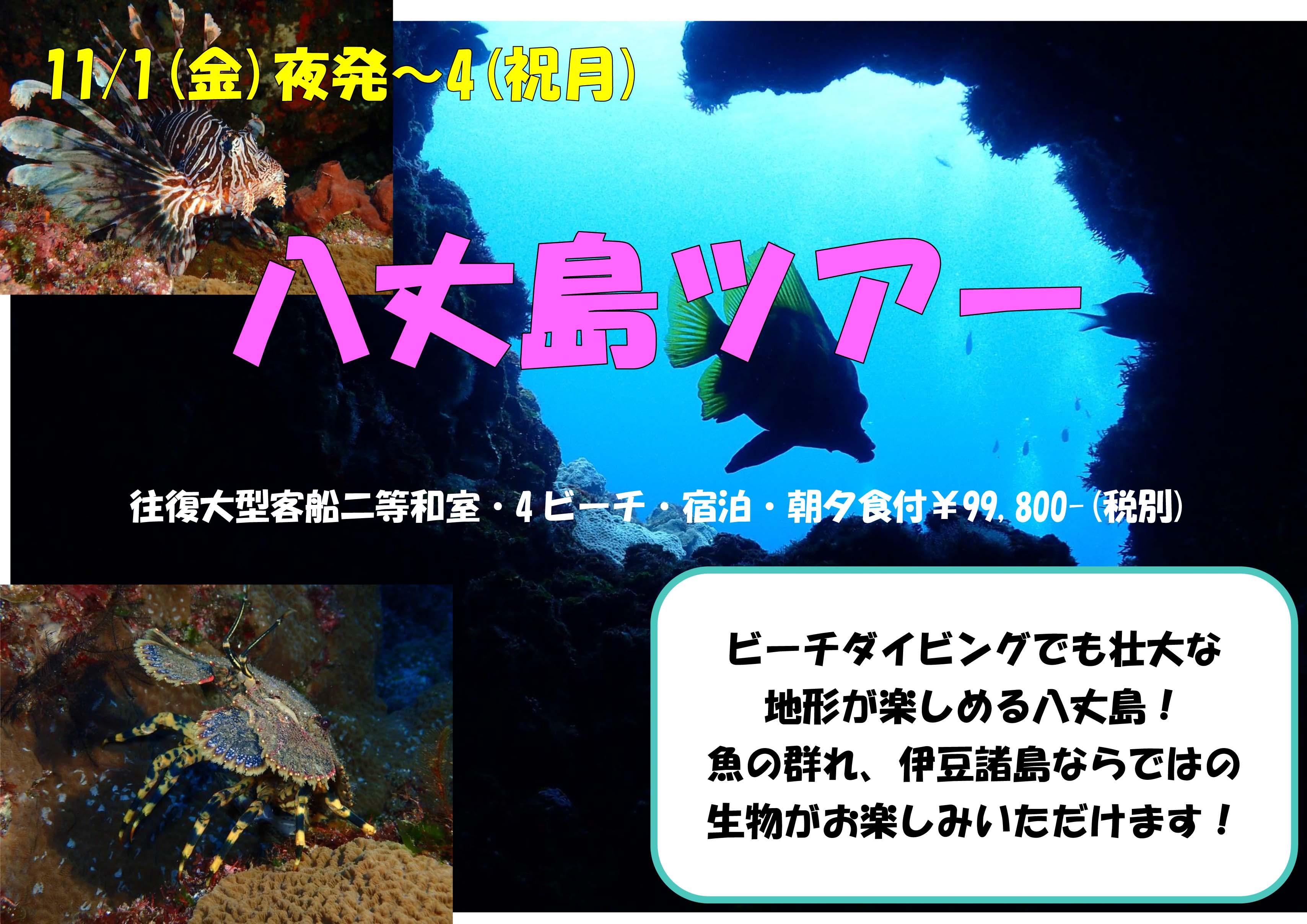 11/1(金)夜発~4(祝月)八丈島ツアー