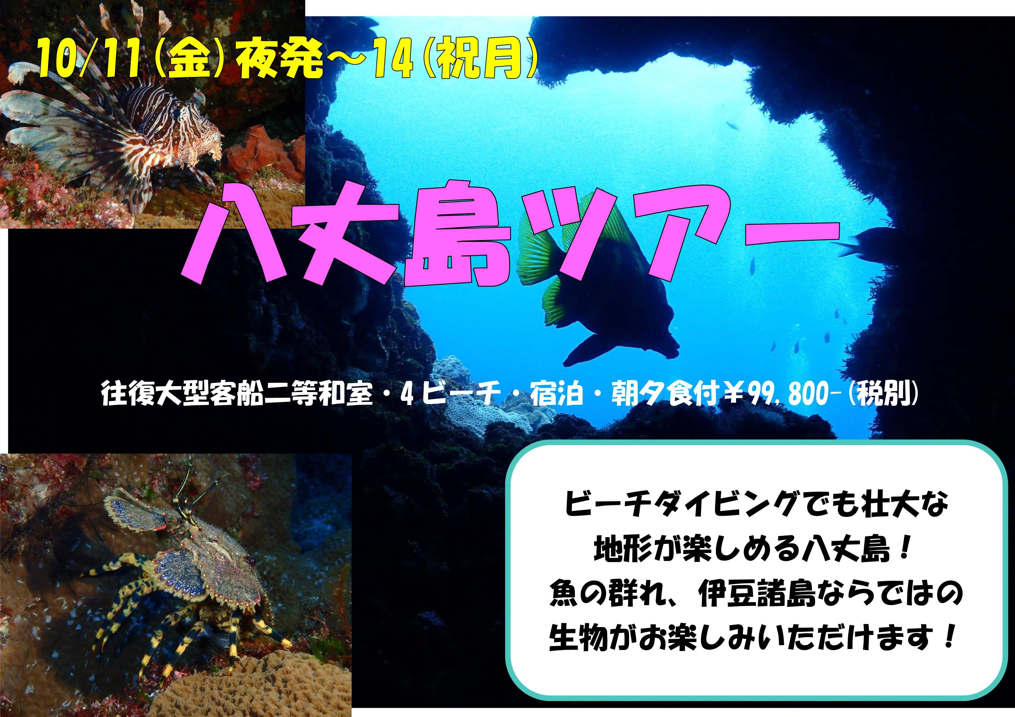 10/11(金)夜発~14(祝月)八丈島ツアー