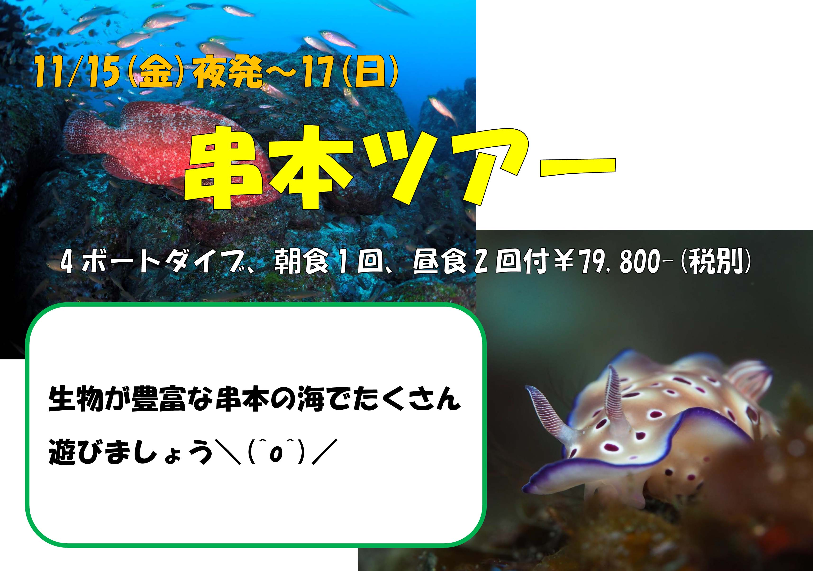 11/15(金)夜発~17(日)和歌山★串本ツアー